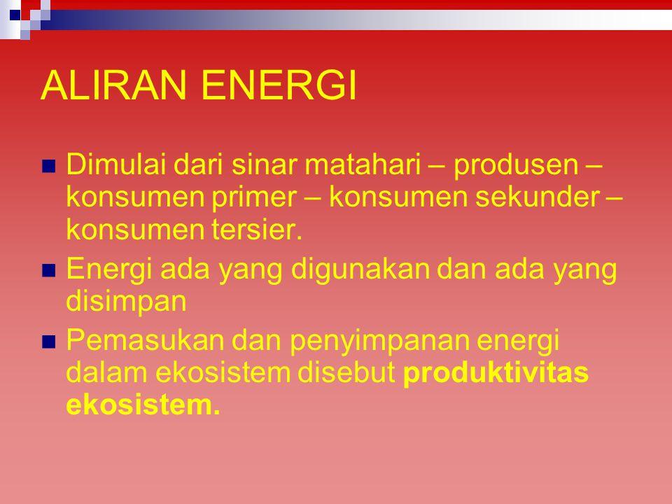 ALIRAN ENERGI Dimulai dari sinar matahari – produsen – konsumen primer – konsumen sekunder – konsumen tersier.