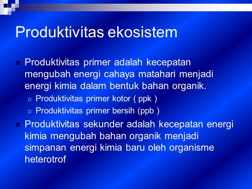 Produktivitas ekosistem