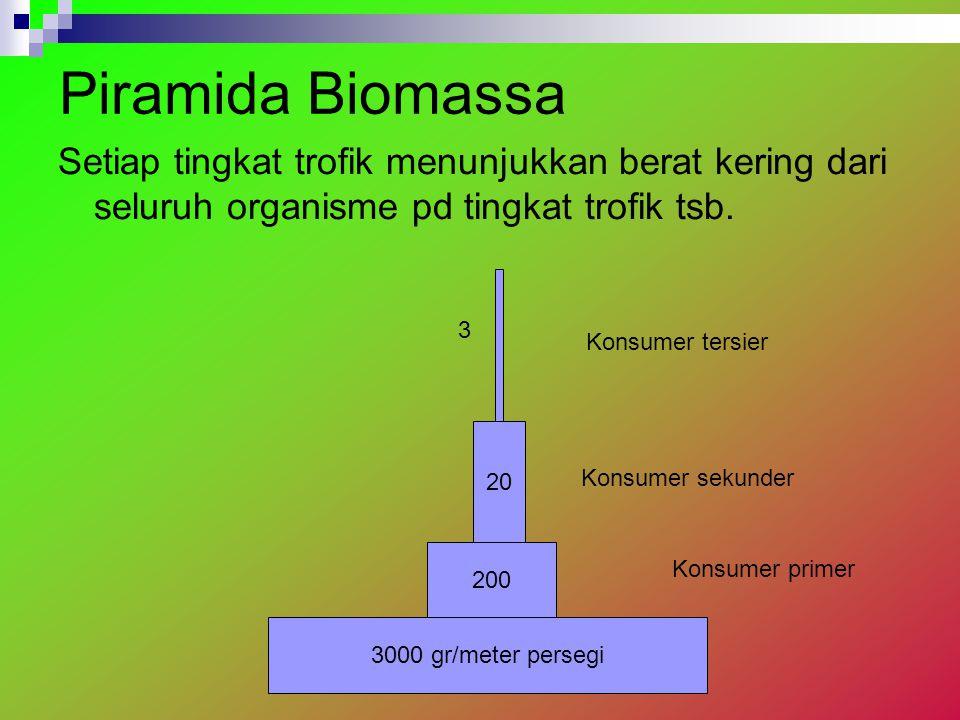 Piramida Biomassa Setiap tingkat trofik menunjukkan berat kering dari seluruh organisme pd tingkat trofik tsb.