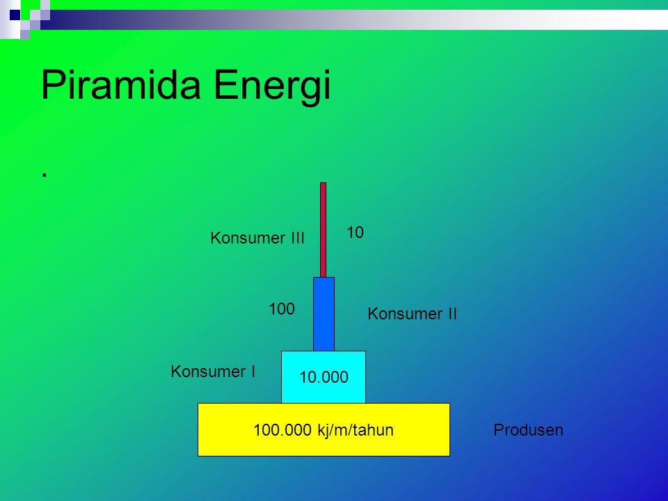 Piramida Energi . Konsumer III 10 100 Konsumer II 10.000 Konsumer I
