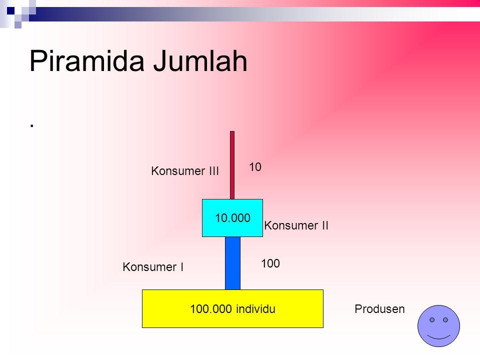 Piramida Jumlah . 10 Konsumer III 10.000 Konsumer II 100 Konsumer I