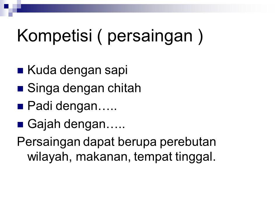 Kompetisi ( persaingan )