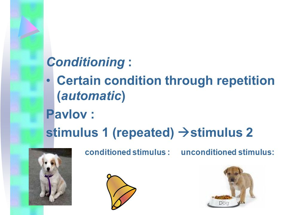 Conditioning : Certain condition through repetition (automatic) Pavlov : stimulus 1 (repeated) stimulus 2.