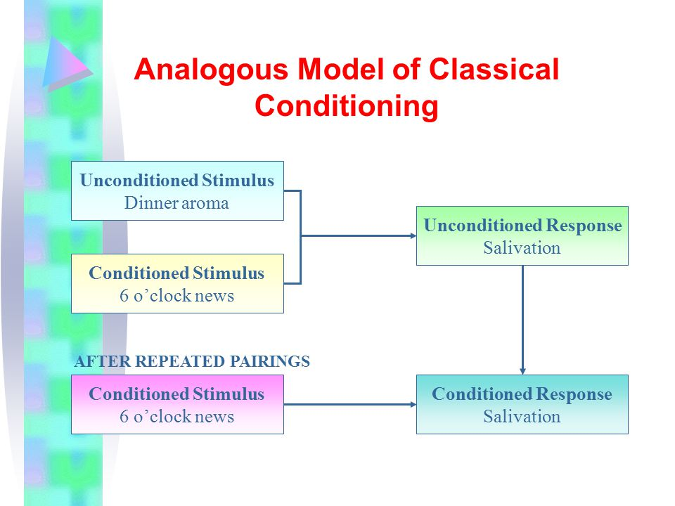 Analogous Model of Classical Conditioning