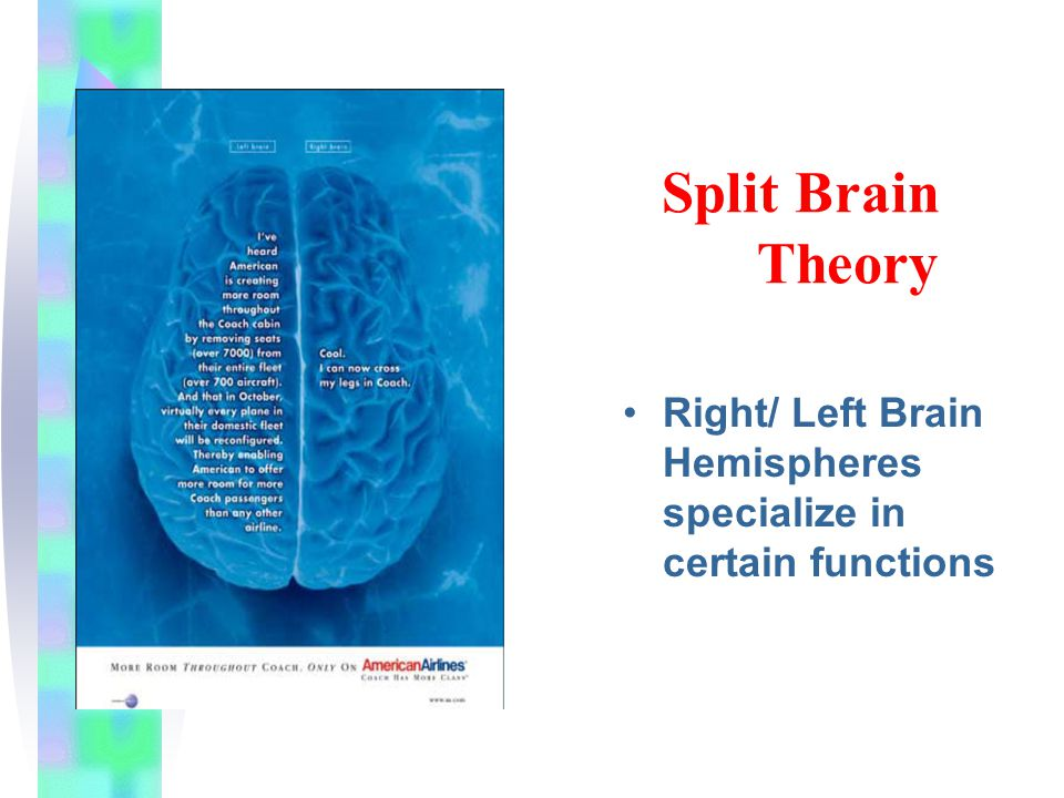 Split Brain Theory Figure 7.14 Right/ Left Brain Hemispheres specialize in certain functions