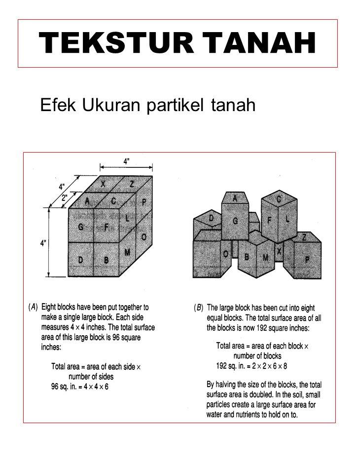 Efek Ukuran partikel tanah