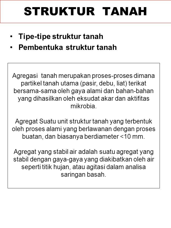 STRUKTUR TANAH Tipe-tipe struktur tanah Pembentuka struktur tanah