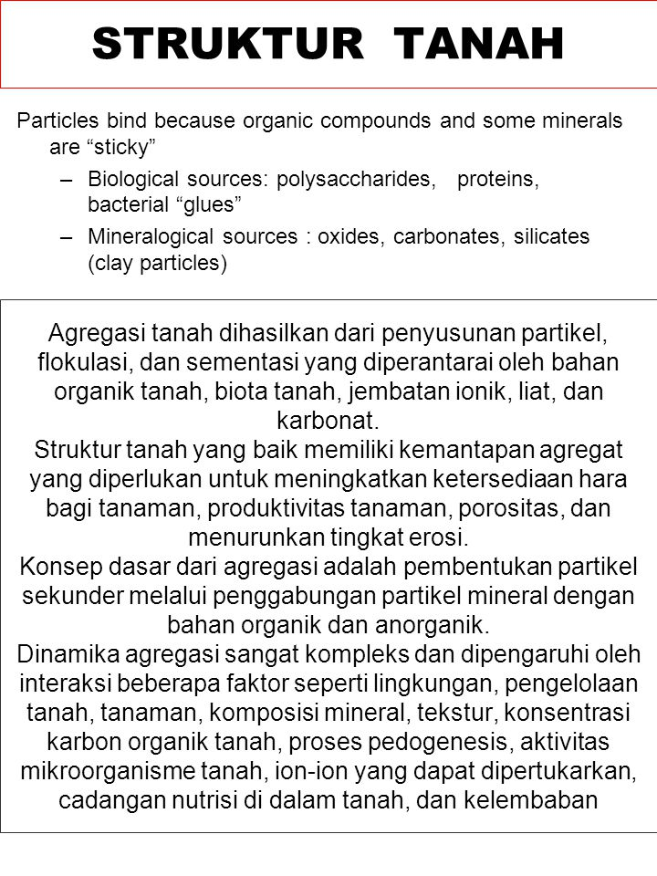 STRUKTUR TANAH Particles bind because organic compounds and some minerals are sticky