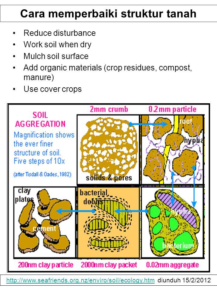 Cara memperbaiki struktur tanah