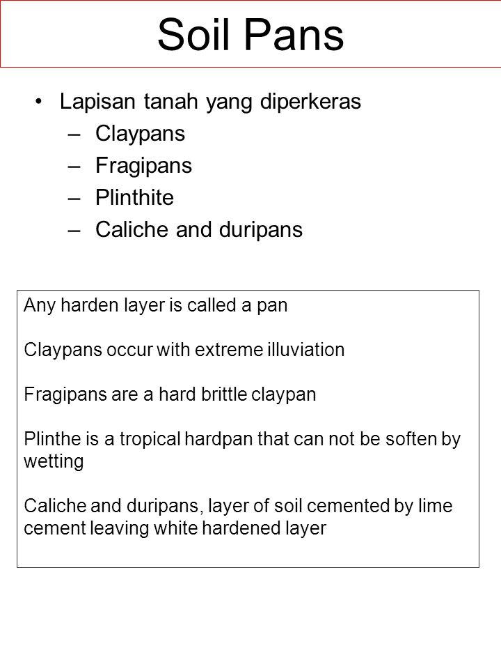 Soil Pans Lapisan tanah yang diperkeras Claypans Fragipans Plinthite