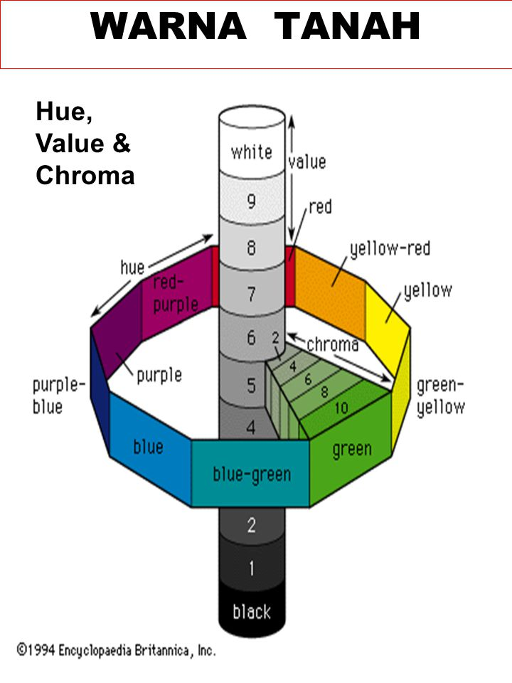 WARNA TANAH Hue, Value & Chroma