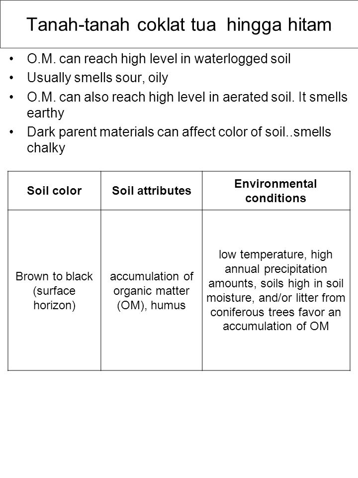 Tanah-tanah coklat tua hingga hitam