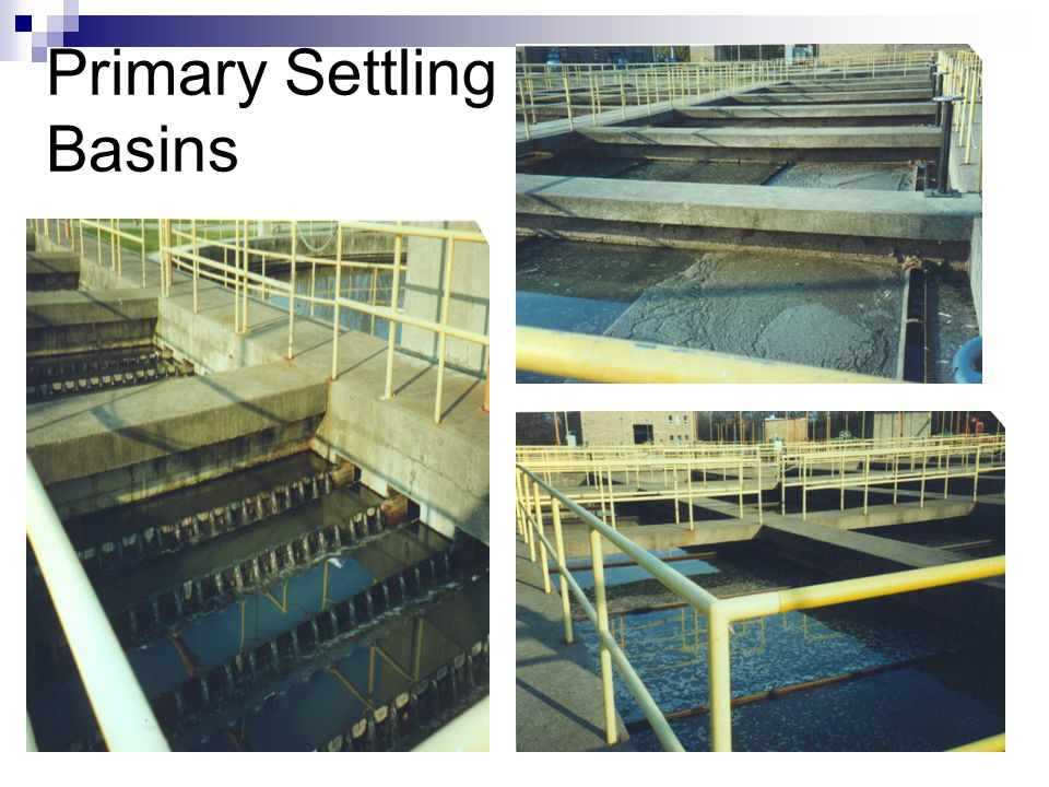 Primary Settling Basins