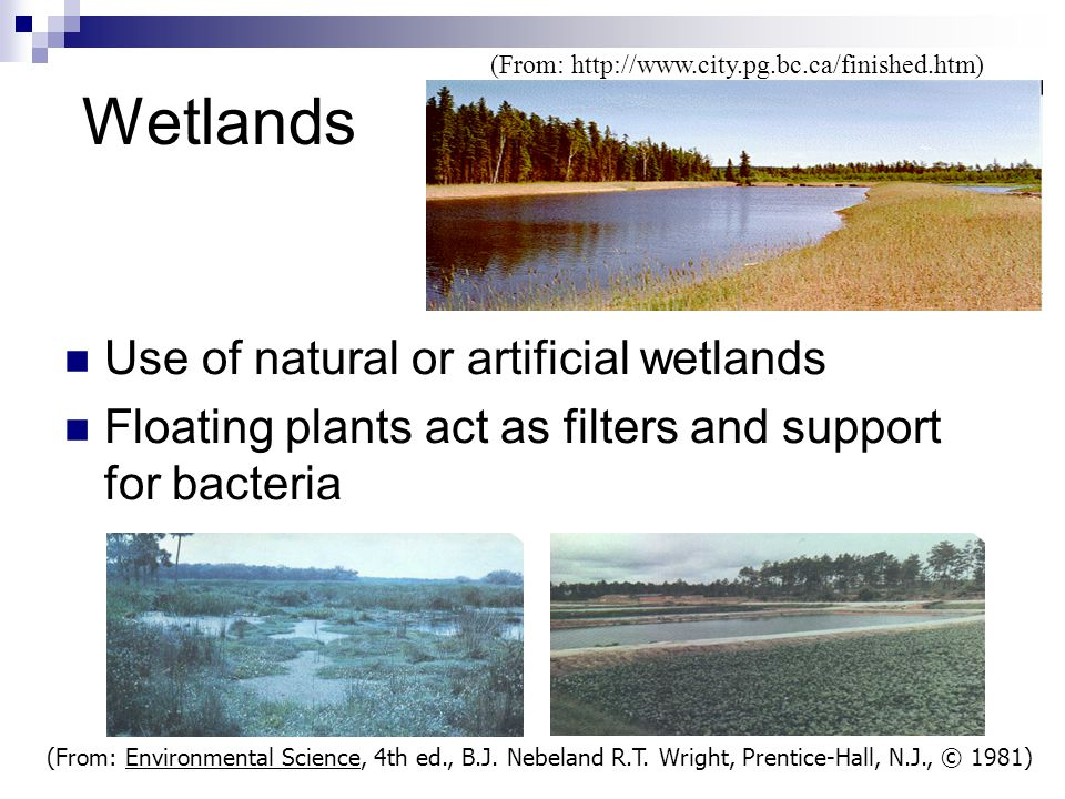 Wetlands Use of natural or artificial wetlands