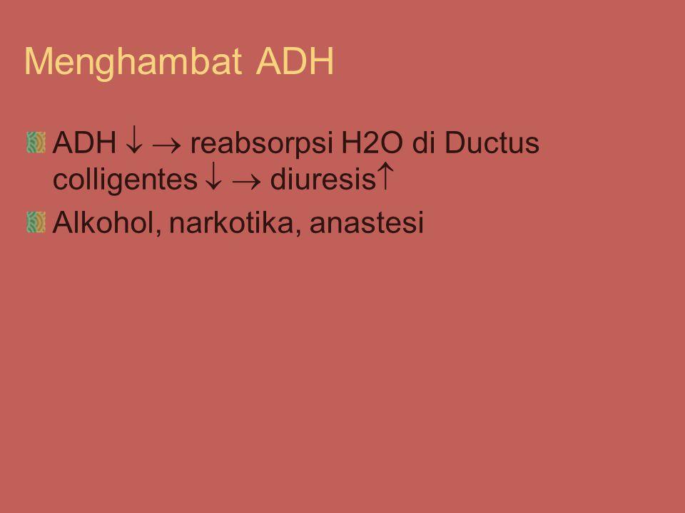 Menghambat ADH ADH   reabsorpsi H2O di Ductus colligentes   diuresis Alkohol, narkotika, anastesi.