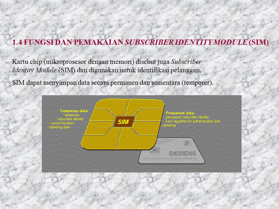 1.4 FUNGSI DAN PEMAKAIAN SUBSCRIBER IDENTITY MODULE (SIM)