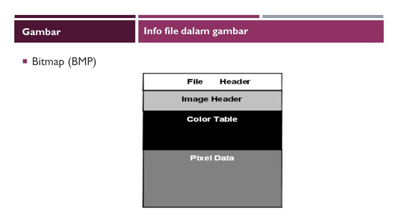 Gambar Info file dalam gambar Bitmap (BMP)