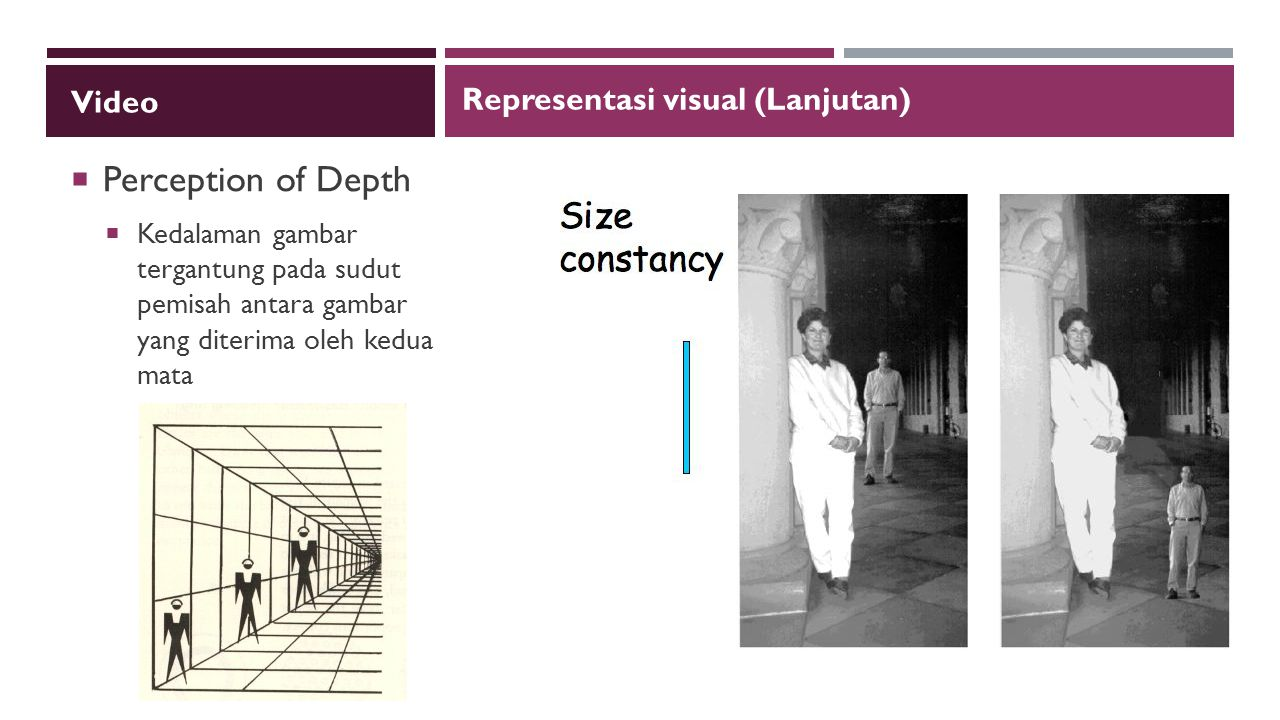 Perception of Depth Video Representasi visual (Lanjutan)