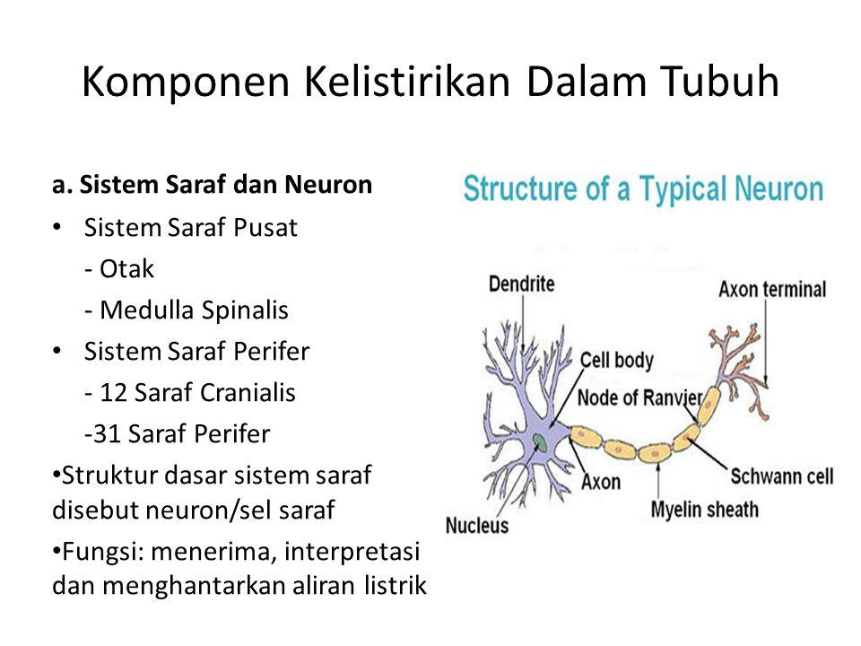 Komponen Kelistirikan Dalam Tubuh