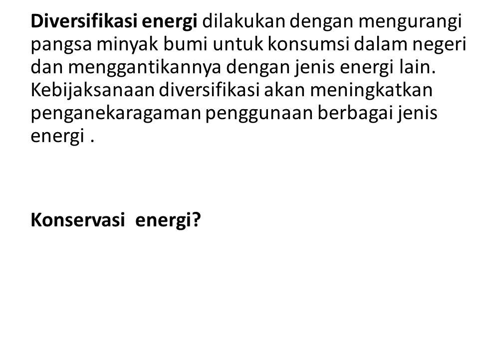 Diversifikasi energi dilakukan dengan mengurangi pangsa minyak bumi untuk konsumsi dalam negeri dan menggantikannya dengan jenis energi lain.