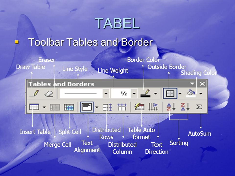 TABEL Toolbar Tables and Border Draw Table Eraser Line Style