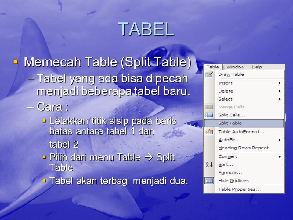 TABEL Memecah Table (Split Table)