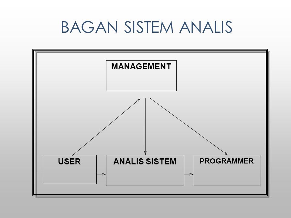 BAGAN SISTEM ANALIS MANAGEMENT ANALIS SISTEM PROGRAMMER USER