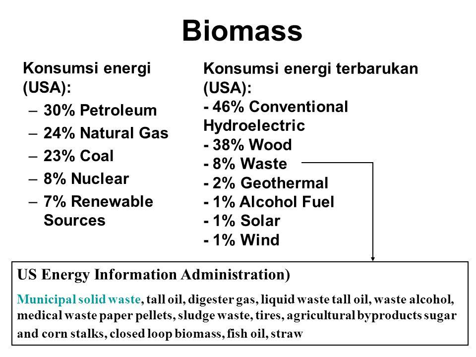 Biomass Konsumsi energi (USA): Konsumsi energi terbarukan (USA):
