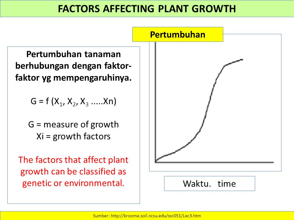 FACTORS AFFECTING PLANT GROWTH