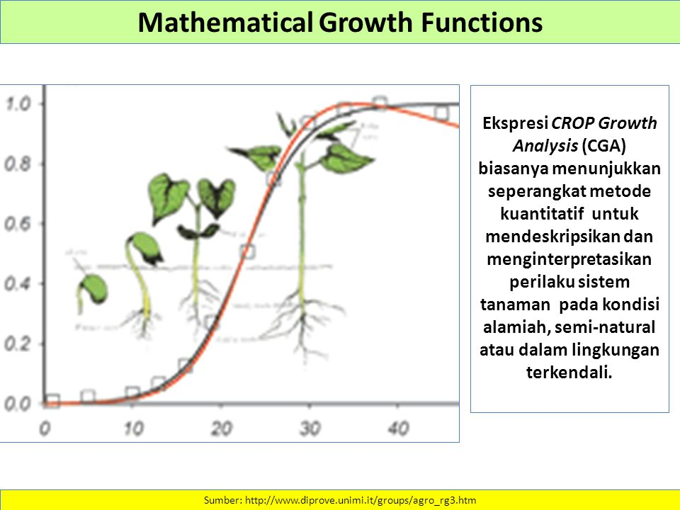 Mathematical Growth Functions
