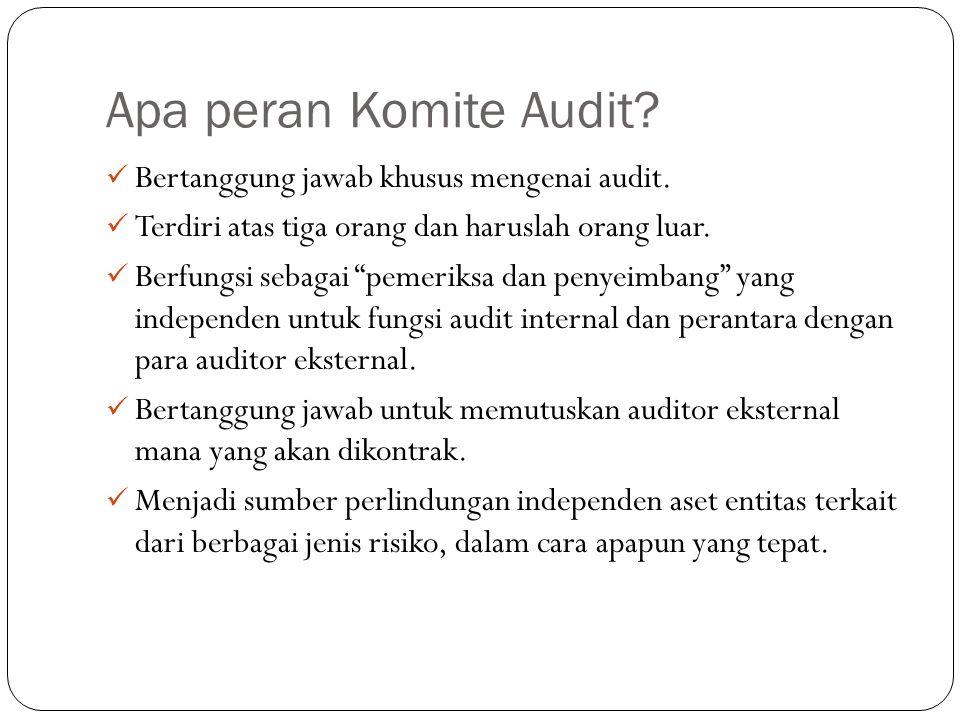Apa peran Komite Audit Bertanggung jawab khusus mengenai audit.