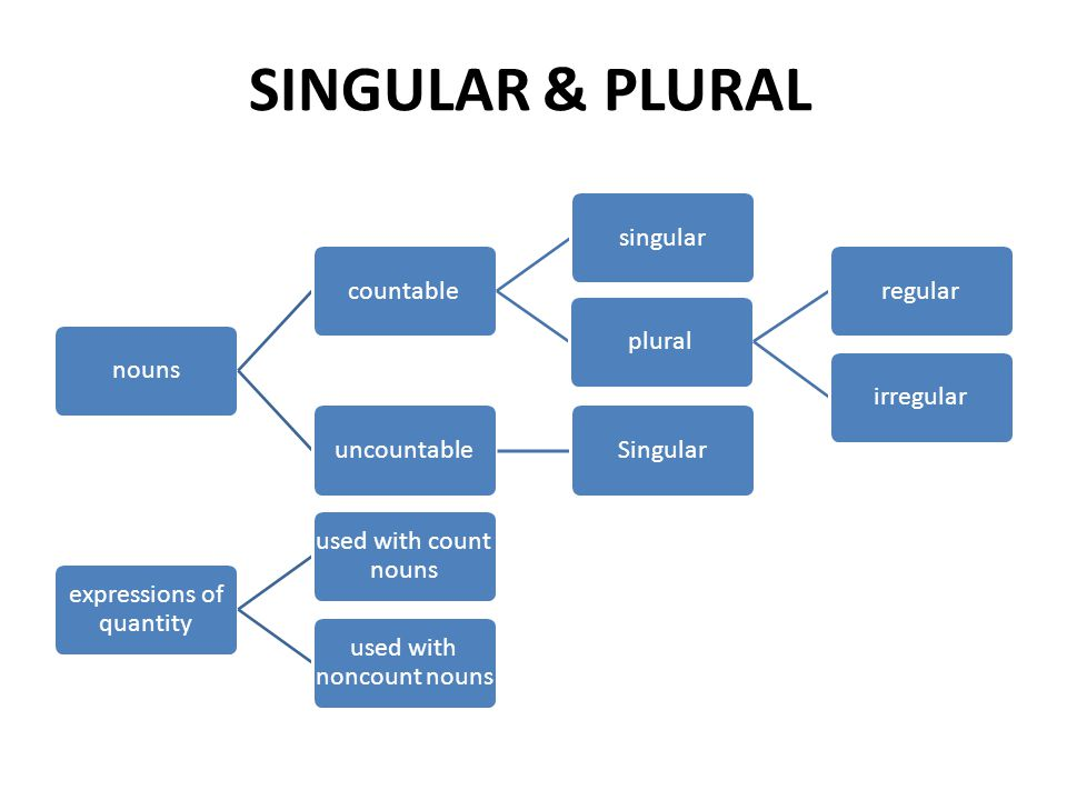 SINGULAR & PLURAL nouns countable singular plural regular irregular