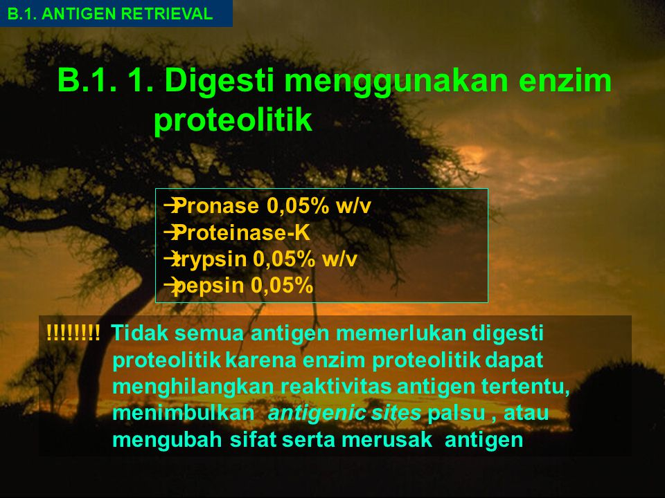 B.1. 1. Digesti menggunakan enzim proteolitik