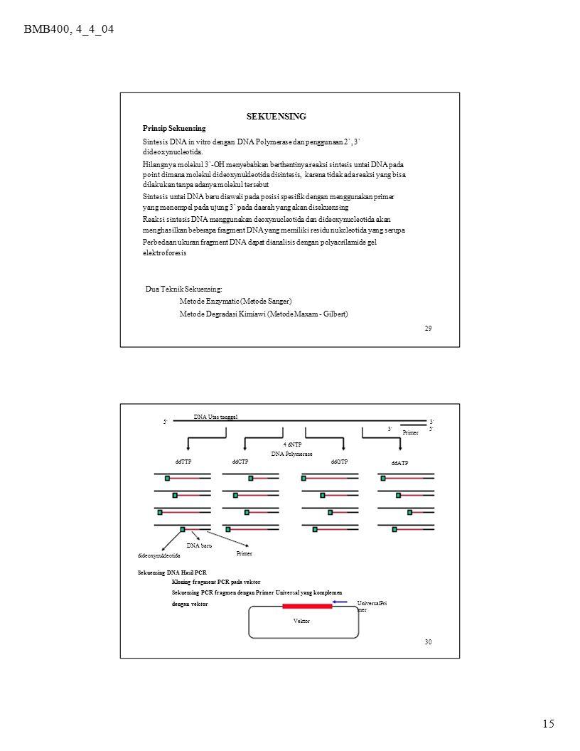 4 dNTP BMB400, 4_4_04 SEKUENSING 15 Prinsip Sekuensing