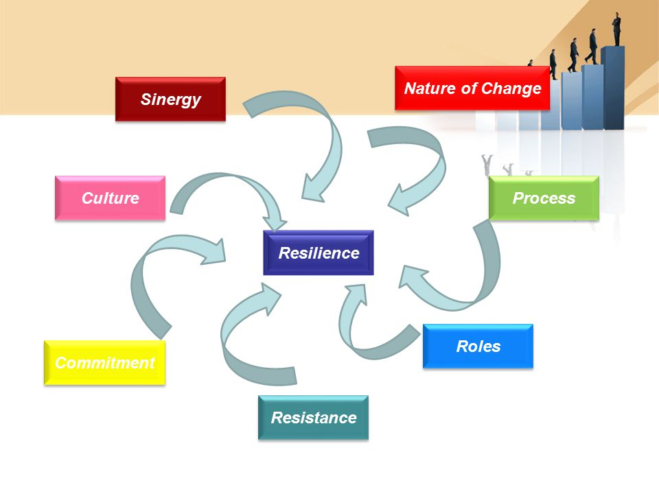 Nature of Change Sinergy Culture Process Resilience Roles Commitment Resistance