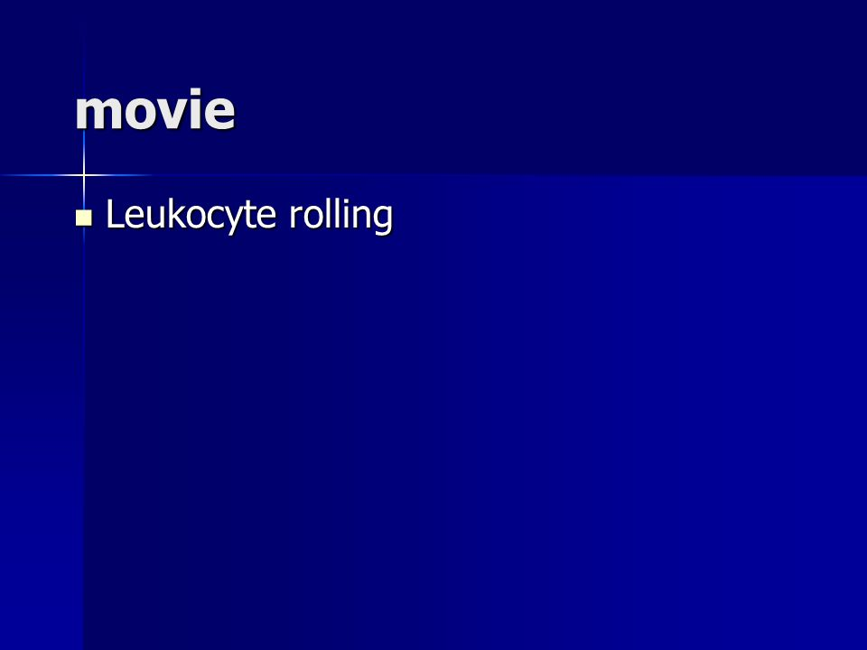 movie Leukocyte rolling