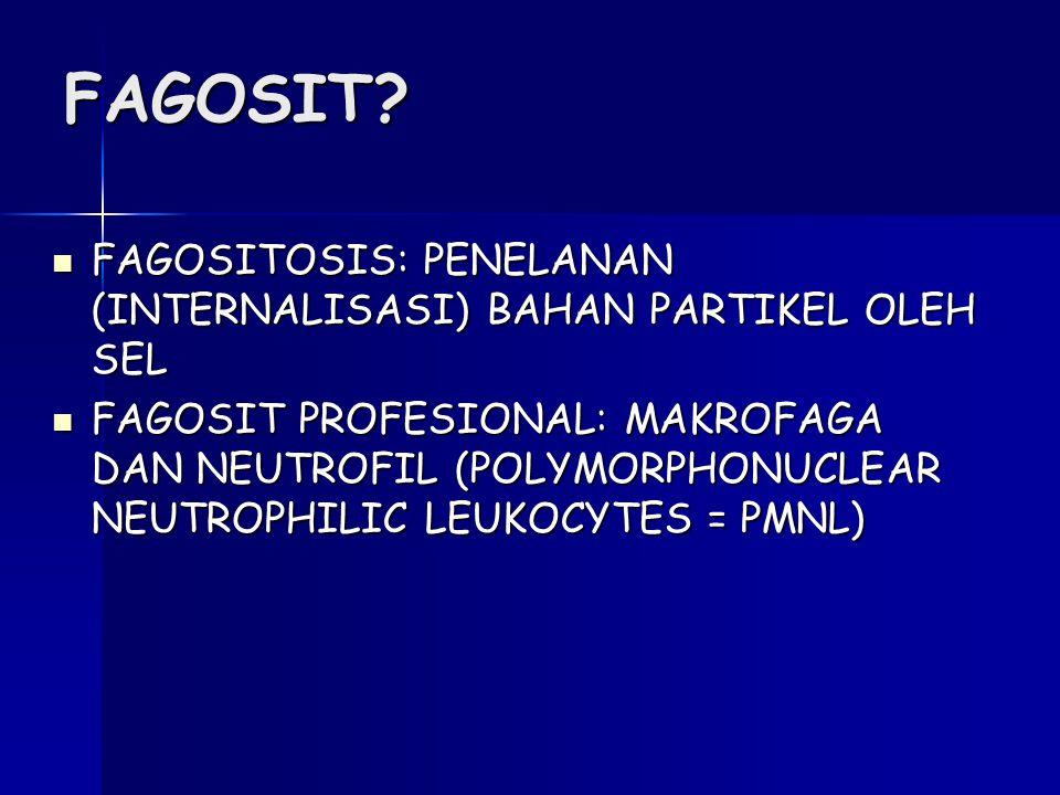FAGOSIT FAGOSITOSIS: PENELANAN (INTERNALISASI) BAHAN PARTIKEL OLEH SEL.