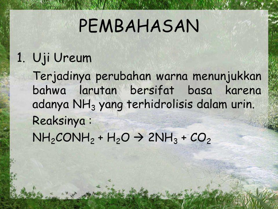 PEMBAHASAN Uji Ureum. Terjadinya perubahan warna menunjukkan bahwa larutan bersifat basa karena adanya NH3 yang terhidrolisis dalam urin.