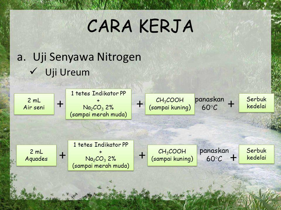 CARA KERJA + + + + + + Uji Senyawa Nitrogen Uji Ureum panaskan 60C