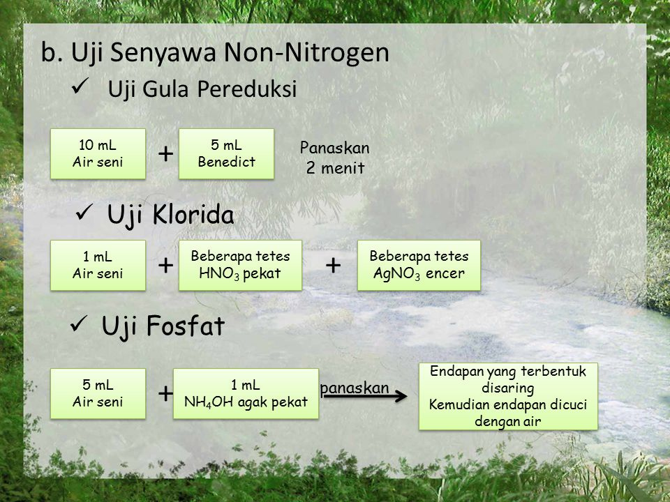 + + + + b. Uji Senyawa Non-Nitrogen Uji Gula Pereduksi Uji Klorida