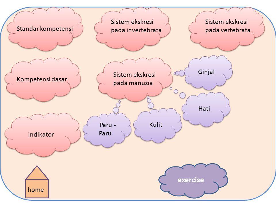 exercise Sistem ekskresi pada invertebrata