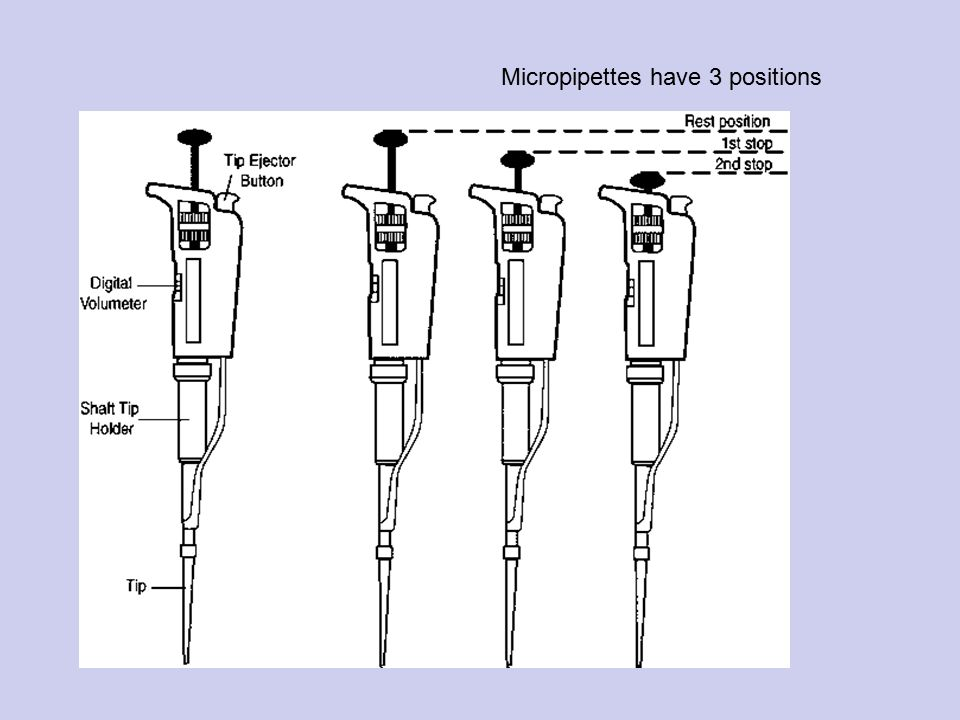 Micropipettes have 3 positions
