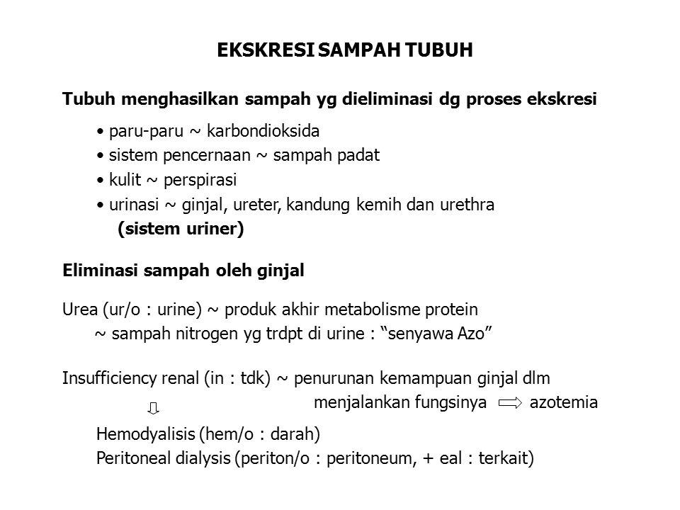 EKSKRESI SAMPAH TUBUH Tubuh menghasilkan sampah yg dieliminasi dg proses ekskresi. paru-paru ~ karbondioksida.