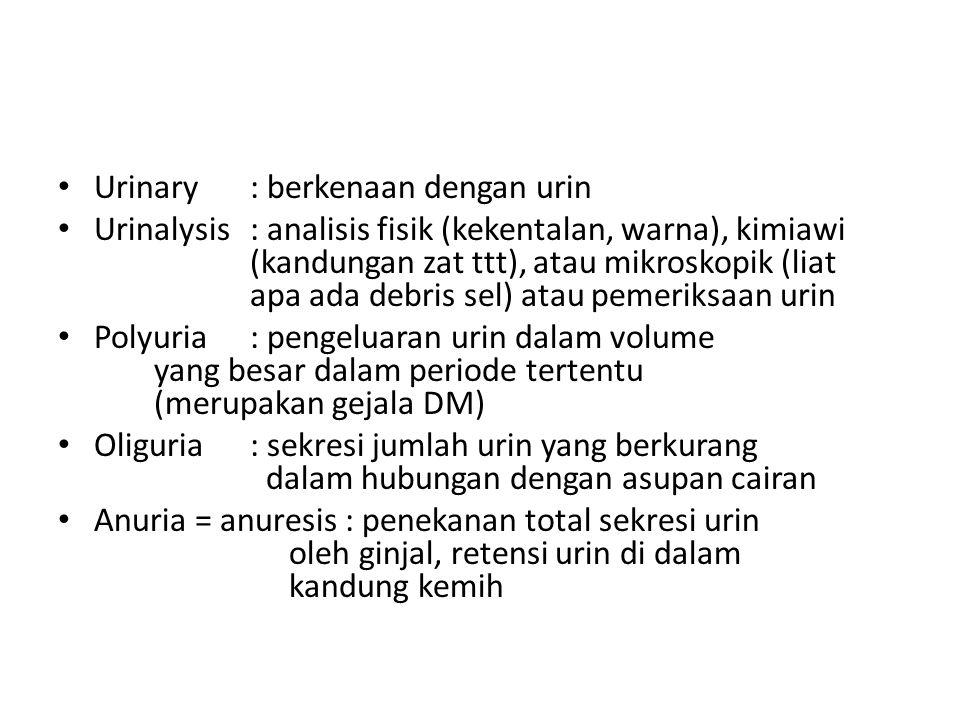 Urinary : berkenaan dengan urin