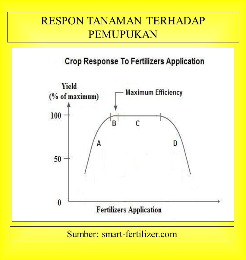 RESPON TANAMAN TERHADAP PEMUPUKAN