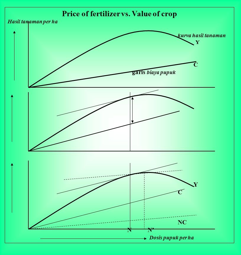 Price of fertilizer vs. Value of crop