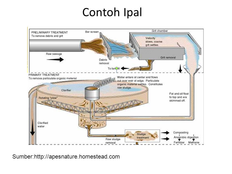 Contoh Ipal Sumber:http://apesnature.homestead.com