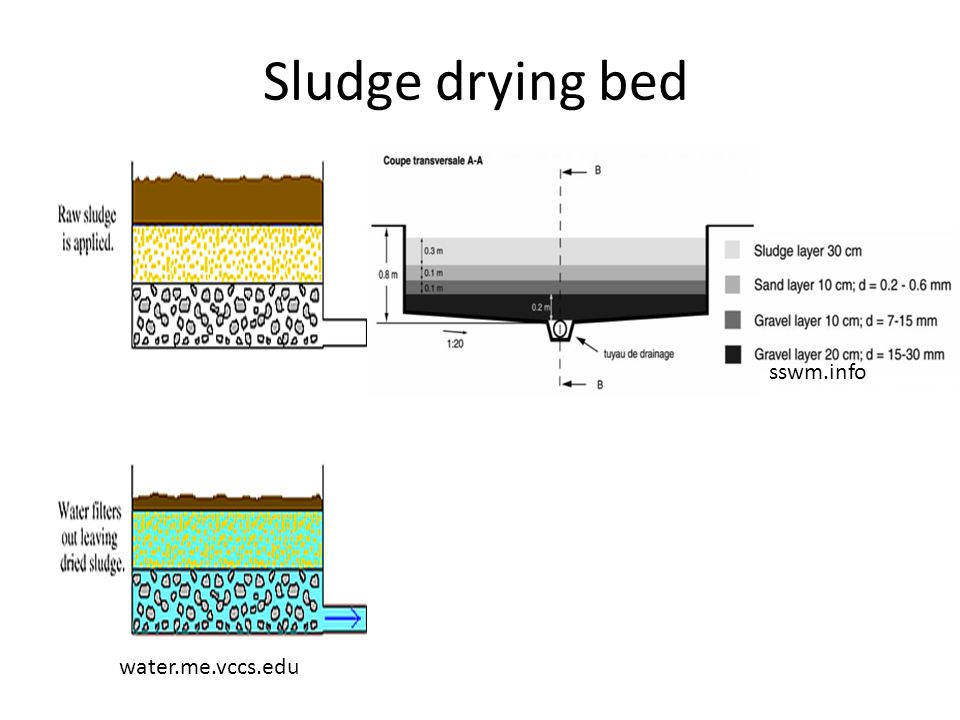 Sludge drying bed sswm.info water.me.vccs.edu