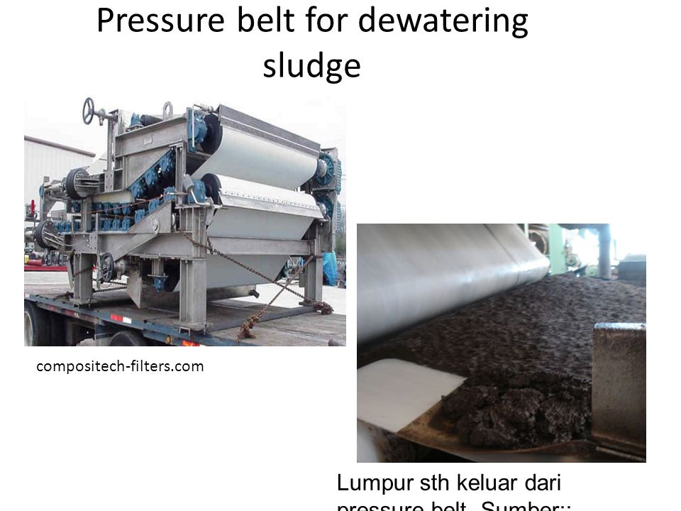 Pressure belt for dewatering sludge