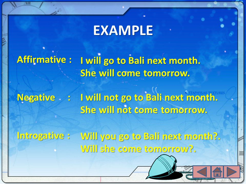 EXAMPLE Affirmative : I will go to Bali next month.